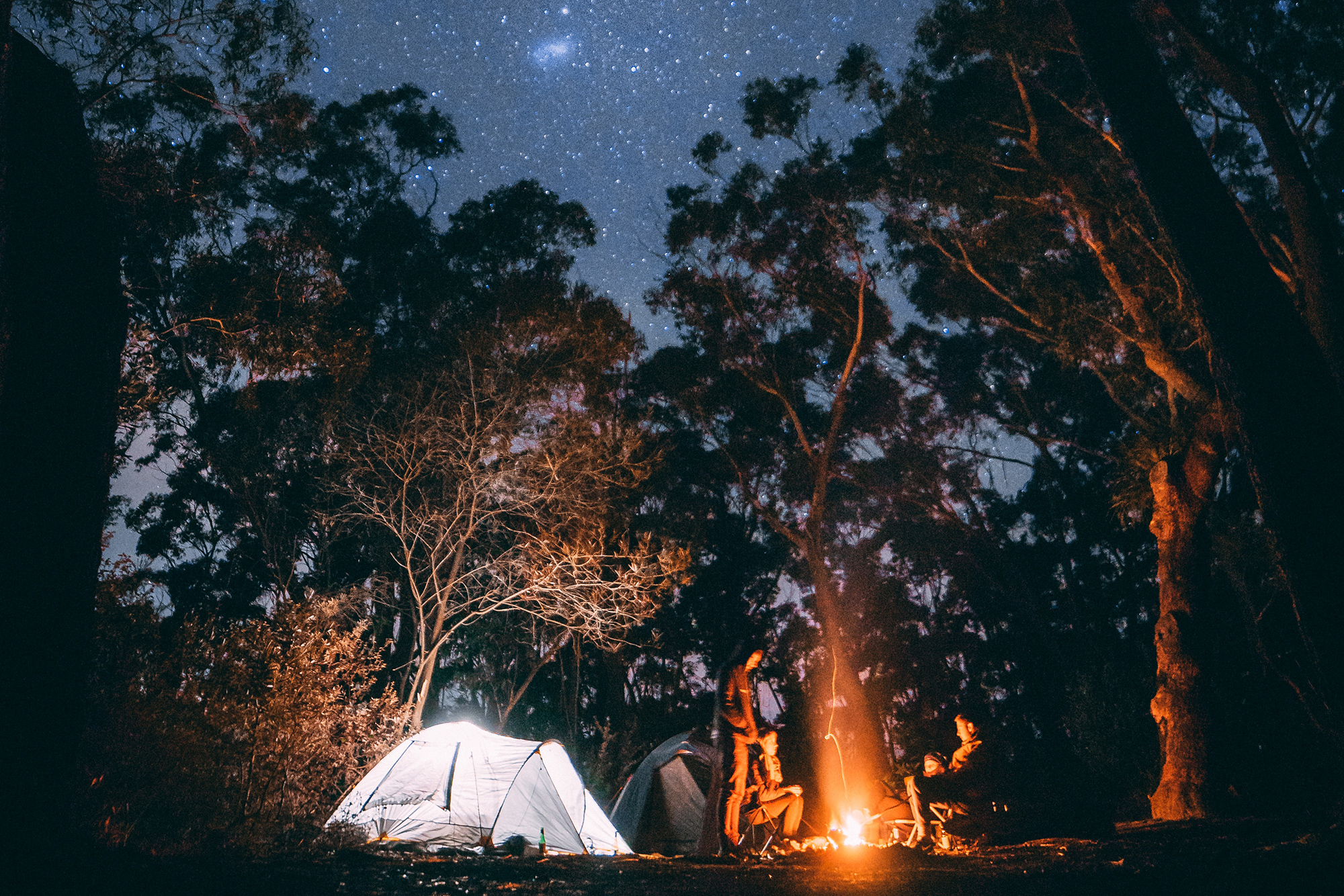 tent and campfire under the stars